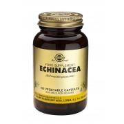 Solgar Echinacea FP: 100 Vegicaps