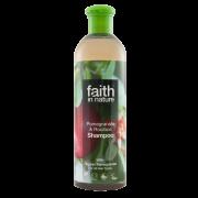 Faith in Nature Pomegranate & Rooibos Shampoo 400ml